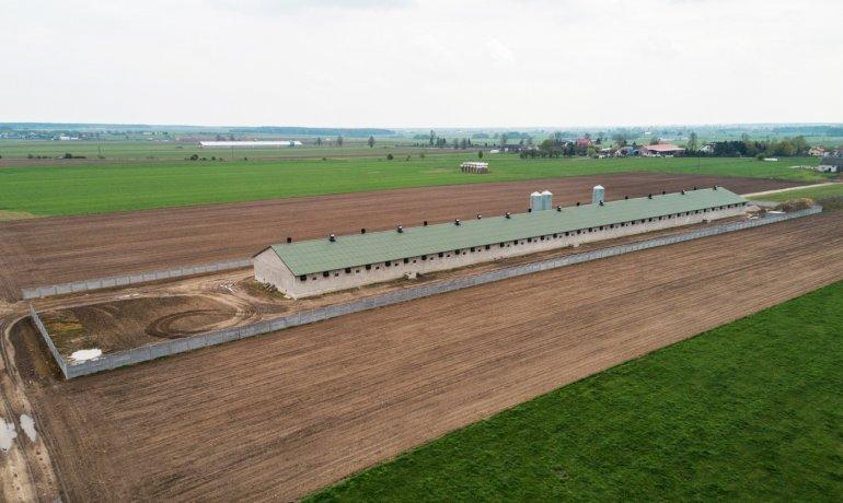 thermano-agro-chlewnia-budynki-rolnicze-1