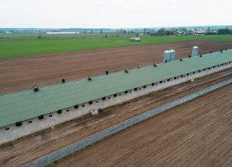 thermano-agro-chlewnia-budynki-rolnicze-2